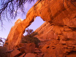 The Wall Arch