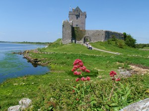 Dunguaire Castle wiosennie