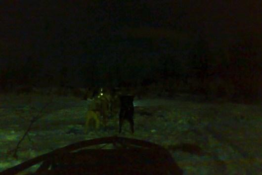 Tromso 12 blog