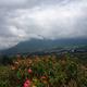 W dole Otavalo