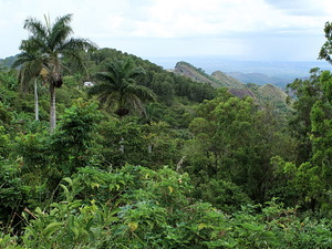 Sierra del Escambray