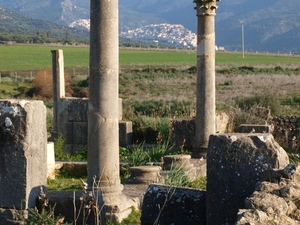 Volubili - widok na Moulay Idriss